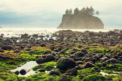 Olympic coast Stock Photos