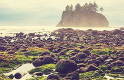 Olympic coast Stock Photo