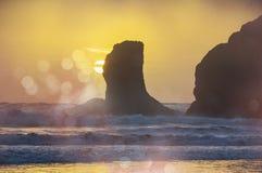 Olympic coast Stock Images