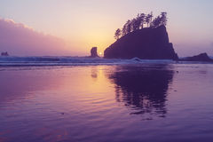 Olympic coast Stock Images