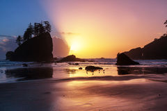 Olympic coast Royalty Free Stock Photo