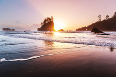 Olympic coast Stock Image