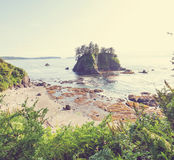 Olympic coast. Scenic and rigorous Pacific coast in the Olympic National Park, Washington, USA. Rocks in the ocean and large logs on the beach Stock Photography