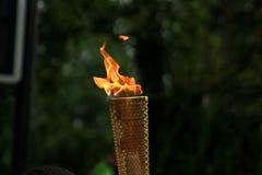 olympic fackla arkivfoto