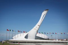 Olympic fire at XXII Winter Olympic Games Royalty Free Stock Photos