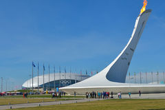 Olympic Flame in Sochi Stock Photos