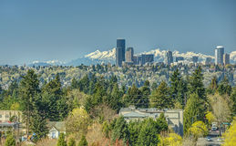 Seattle Skyline with Olympic Mountains from Bellevue, Washington in Spring. The Skyline of Seattle, Washington Looms Large over the Surrounding Greenery as the Stock Photo
