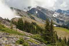 Olympic Mountain View Royalty Free Stock Photo