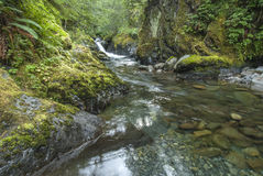 Olympic Mountains water Royalty Free Stock Photo