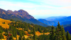 Olympic National Park. Autumn. Road to Olympic National Park Royalty Free Stock Photography