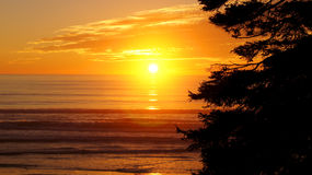 OLYMPIC NATIONAL PARK, USA, 03th OCTOBER 2014 - sunset at Ruby Beach near Seattle - Washington. This is Ruby Beach in the Olympic National Park, Washington Royalty Free Stock Image