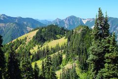 Free Olympic National Park, Washington State, Pacific Northwest, USA - Alpine Meadows On Hurricane Ridge Above Elwha River Valley Royalty Free Stock Photography - 158024027