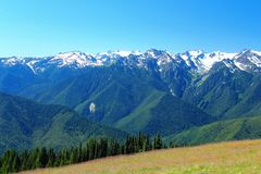 Free Olympic National Park, Washington State, Pacific Northwest, USA - Mount Olympus And Bailey Range From Hurricane Ridge In Summer Stock Images - 153243714