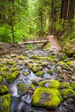 Olympic National Park, Washington, USA stock photography