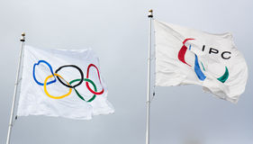 Olympic and Paraolympic Flags. Flags of the Olympic and Paraolympic Games taken at Vancouver 2010 Stock Image