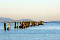 Olympic peninsula Royalty Free Stock Images