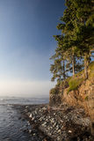 Olympic Peninsula Coast Royalty Free Stock Images