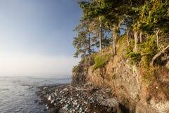 Olympic Peninsula Coastline Royalty Free Stock Image