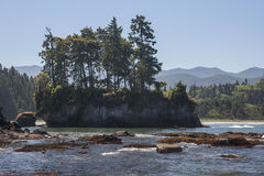 Olympic Peninsula Royalty Free Stock Photography