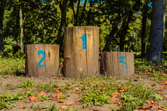 Olympic podium of the stumps in clearing in the autumn Royalty Free Stock Photo