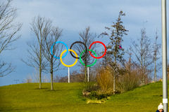 Olympic Rings Royalty Free Stock Image