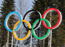 Olympic rings. SOCHI, RUSSIA - FEBRUARY 23, 2014: olympic rings on Cross-country ski center Laura at Sochi 2014 XXII Olympic Winter Games Royalty Free Stock Photo