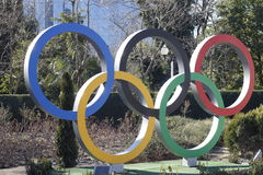Olympic rings. In the street of Sochi Royalty Free Stock Images