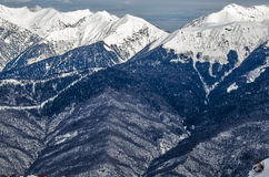 Olympic ski trail Rosa Khutor. Royalty Free Stock Photography