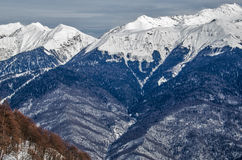 Olympic ski trail Rosa Khutor. Stock Photos