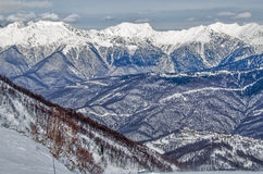 Olympic ski trail Rosa Khutor. Stock Image