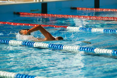 Olympic swimmer training. Olympic swimmer during training in indoor swimming pool Stock Image