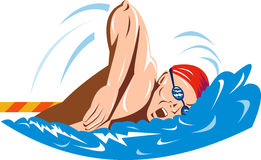 Olympic Swimming freestyle Royalty Free Stock Images