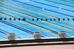 Olympic swimming pool. Starting blocks in a olympic swimming pool Royalty Free Stock Image