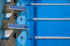 Olympic swimming pool. Empty olympic swimming pool with clear blue water Royalty Free Stock Photos