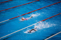 Olympic swimming pool with swimmer crawl race Stock Photography