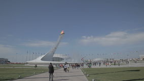 Olympic torch at the World Winter Olympic Games XXII stock video