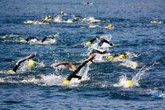olympic triathlon för koppcusio Arkivfoton