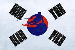 Olympics de inverno de Coreia do Sul - slalom ilustração royalty free