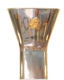 Olympische vlam Royalty-vrije Stock Foto's
