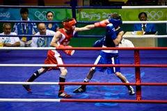 Olympischer Boxer landet einen Locher Stockfotografie