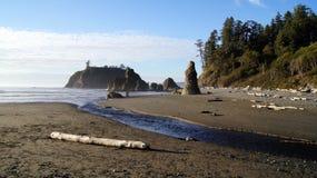 OLYMPISK NATIONALPARK, USA, 03. OKTOBER 2014 - Ruby Beach nära Seattle - Washington Royaltyfri Foto