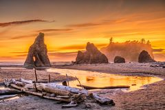 Olympisk nationalpark, Washington, USA på Ruby Beach royaltyfria bilder