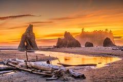 Olympisk nationalpark, Washington, USA på Ruby Beach royaltyfria bilder