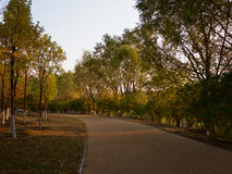 Olympiska Forest Park Royaltyfri Bild