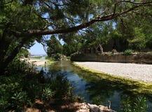 Olympos beach (Lycia) Antalya Stock Image