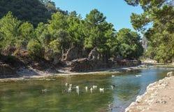 Olympos Fluss u. Ruinen, die Türkei-Landschaft Stockbild