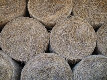 Bales of hay, straw rollers stock image