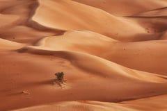 Omán: Cuarto vacío Imagen de archivo libre de regalías
