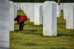 Omärkt allvarlig kyrkogård för ensam soldat royaltyfri foto