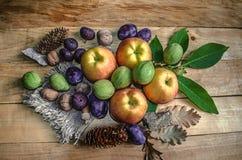 Omålade bräden med kanfas och äpplen, katrinplommoner, fikonträd och valnötter Royaltyfri Bild
